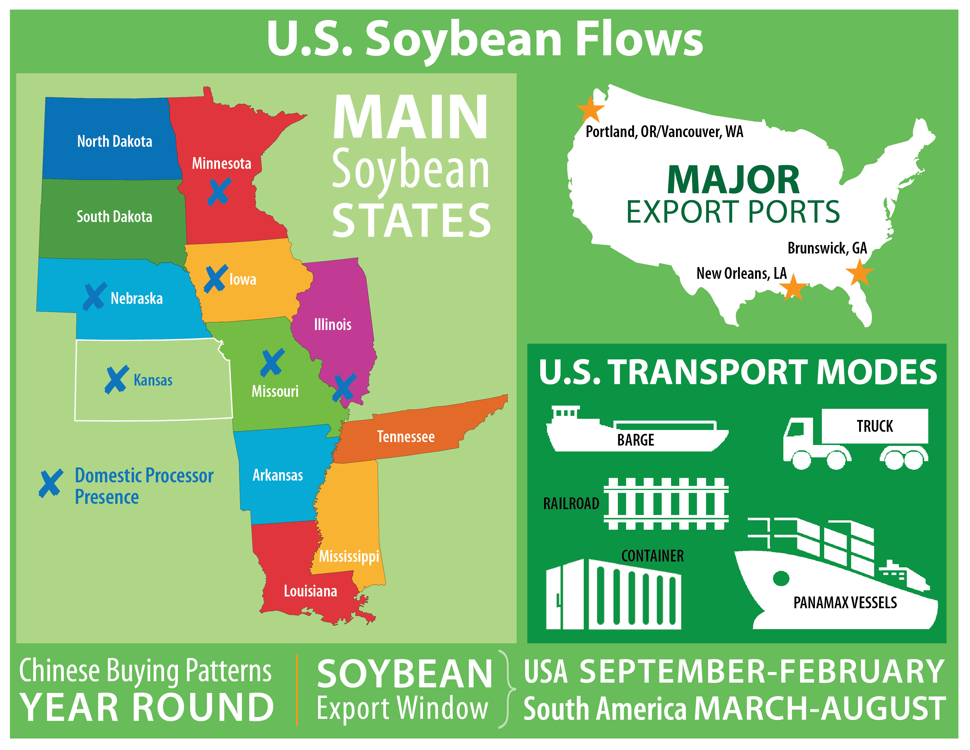 Soybean Infographic